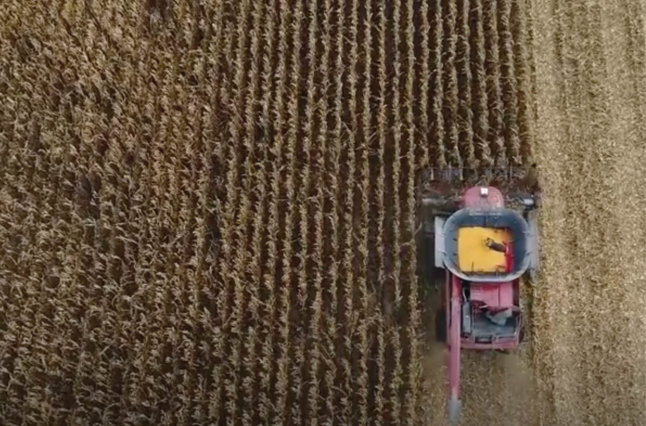 Tractor plowing field.