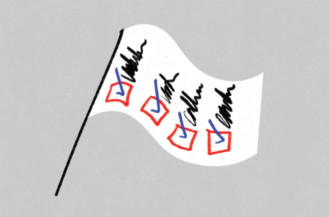 Graphic image of a flag with a checklist of election protections